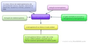 New-Mind-Map_5fs6xwly B